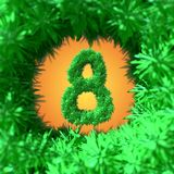 8 March symbol eight made of foliage leaf fur flying in the space and round by frame. Can be used as a decorative greeting grungy Stock Images