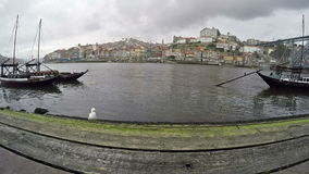 March 06, 2017 - Traditional Portuguese boats on Douro river, City of Porto, Portugal. Panoramic view with bird in cloudy weather.  stock footage