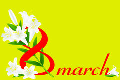 8 March and  white  lily Royalty Free Stock Images