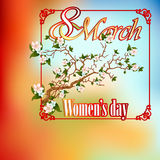 8 March  Woman's day background with branch blossom Stock Photography