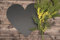 March 8, woman's holiday!. Branch of mimosa on a wooden boards background for valentines day Royalty Free Stock Images