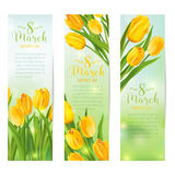 8 March - Women's Day Greeting Banners. With Colorful Tulips - in vector stock illustration