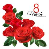 8 March Women`s Day greeting card template. Realistic red roses isolated on white background. Images for your design projects vector illustration