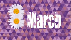March 8 Women`s Day. NMarch 8 Women`s Day daisy Celebration card Royalty Free Stock Images