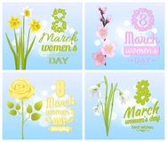 8 March Womens Day Greeting Cards Design Flowers. 8 March Womens day greeting cards design with spring flowers yellow daffodils, sakura blossoms, tender rose and Stock Photos