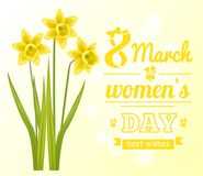 8 March Womens Day Poster Best Wish Greeting Card. 8 March womens day poster best wishes greeting card with daffodil flowers vector illustration postcard on Royalty Free Stock Photo