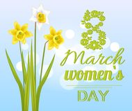 8 March Womens Day Poster with Realistic Daffodils. 8 March womens day poster with realistic daffodil flowers on blurred blue background, congratulations Stock Image