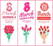 8 March Womens Day Set Poster Vector Illustration. 8 March womens day, set of poster with greetings, headlines decorated with flowers, bouquets of tulips and royalty free illustration