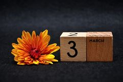 3 March on wooden blocks with an orange daisy. On a black background stock photos