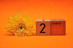 2 March on wooden blocks with a yellow daisy. On an orange background stock image