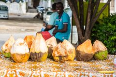 Marchand ambulant des noix de coco Ville en pierre, vieux centre colonial de ville de Zanzibar, île d'Unguja, Tanzanie photo stock