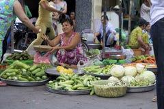 Marchand ambulant du Vietnam Image libre de droits