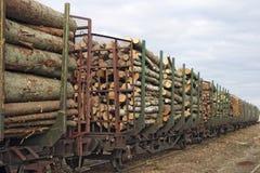 Marchandises de bois de charpente Photo stock