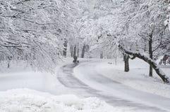 Marchant deux chiens dans la neige. Images stock
