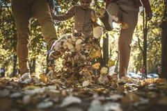 Marchant la chute de cuvette des feuilles est amusement Image libre de droits