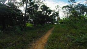 Marchant sur une traînée le long des palmiers et la jungle de forêt sur l'île de lapin, Kaoh Tonsay, Cambodge banque de vidéos
