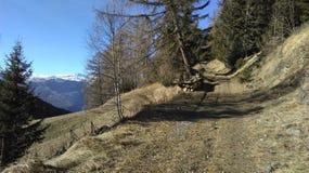 Marche Photo stock