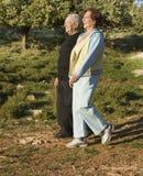 Marche aînée de couples Image stock