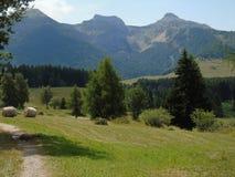 Marche autour de Tre Cime di Trento en été Images stock