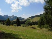 Marche autour de Tre Cime di Trento en été Photographie stock libre de droits