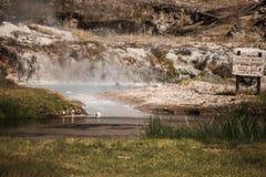 Marche autour du site géologique de crique chaude Photo stock