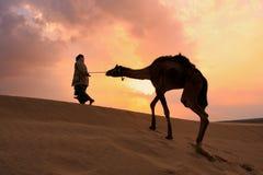 Marche bédouine silhouettée avec son chameau au coucher du soleil, deser de Thar Photos libres de droits