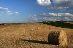 Marche countryside scene. Panoramic scene of countryside captured near Pollenza / Macerata / Marche Stock Photo