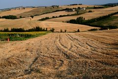 Marche countryside scene. Panoramic scene of countryside captured near Tolentino / Macerata / Marche Royalty Free Stock Photography