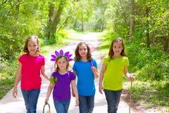 Marche d'amis et de filles de soeur extérieure dans la voie de forêt Photos libres de droits