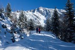 Marche dans la belle scène de l'hiver Photo libre de droits