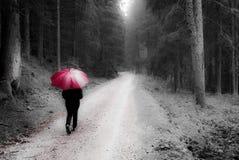 Marche dans la forêt Photo stock