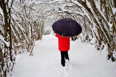 Marche dans la neige Image libre de droits