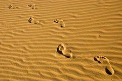 Marche dans la plage Photo libre de droits