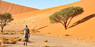 Marche dans le désert Photographie stock libre de droits