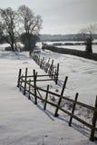 Marche dans les domaines hivernaux Photographie stock