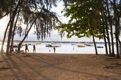 Marche dans les jardins botaniques dans Mauritious Photographie stock libre de droits