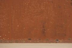 Marche de désert Photographie stock