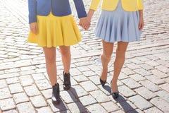 Marche de deux amis Image stock