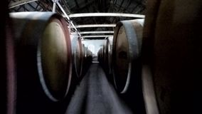 Marche de fabricant de vin banque de vidéos