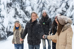 Marche de Forest Happy Smiling Young People de neige de groupe d'amis extérieure Photo stock
