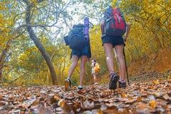 Marche de jeunes femmes d'équipe de randonneur de nature d'automne images libres de droits