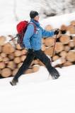 Marche de nordic de l'hiver Image stock
