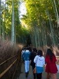 Marche de touristes dans la forêt en bambou photo stock