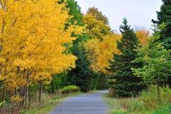 Marche en automne Image libre de droits