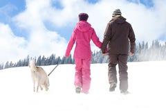 Marche en hiver image libre de droits