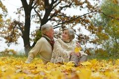 Marche en stationnement d'automne Photographie stock