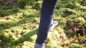 Marche femelle de jeune métis sur la mousse verte Fille asiatique trimardant dans bel Autumn Forest Lifestyle Slowmotion 4K banque de vidéos