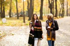 Marche femelle multiraciale d'amis Photos libres de droits