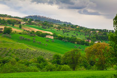 Marche green hills Royalty Free Stock Image