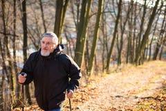 Marche nordique d'homme aîné Images stock